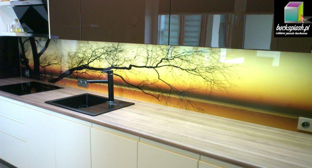 Szklana płyta na ścianę w kuchni